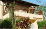 Hotel Portal Rio Una - Thumbnail 16