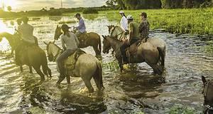 Pacote Bonito e Pantanal